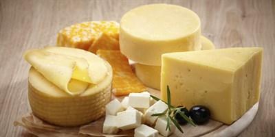Все товары для домашнего сыроварения