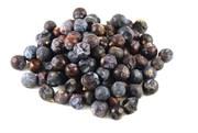 Можжевельник плоды фасованный, 50 гр