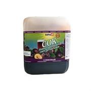 (Бар) Сок сливовый концентрированный НР, 5 кг