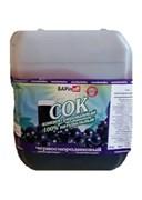 Сок концентрированный черносмородиновый, 5 кг