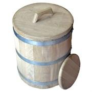 Кадка дубовая 5 литров. Черноморский скальный дуб