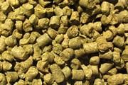 Хмель пивоваренный «Jarrylo», 50 гр