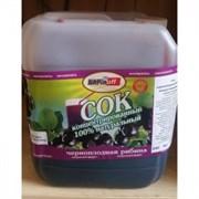 (Бар) Сок черноплоднорябиновый концентрированный НР, 5 кг